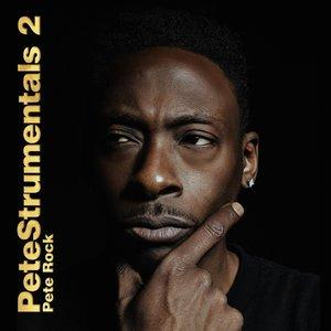 Petestrumentals 2 (Vinyl)