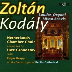 Laudes Organi-Missa Brevis