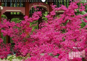 Shrubs and Trees in Spring and Autumn (Wall Calendar 2016 DIN A3
