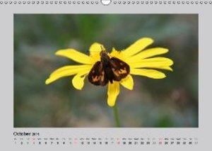 Fascination Philippines (Wall Calendar 2015 DIN A3 Landscape)