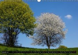 Trees in spring / UK-Version (Wall Calendar 2015 DIN A3 Landscap