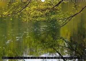 Trees in spring / UK-Version (Wall Calendar 2015 DIN A3 Landscap