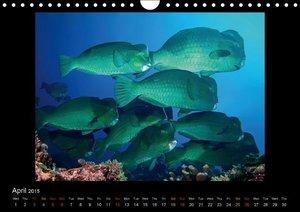 Ocean-Art / UK-Version (Wall Calendar 2015 DIN A4 Landscape)