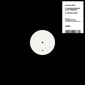 DEGREELESSNESS Feat. Prurient b/w Now We Know