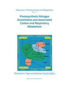 Photosynthetic Nitrogen Assimilation and Associated Carbon and R