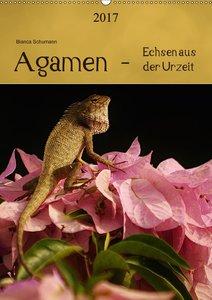 Agamen - Echsen aus der Urzeit
