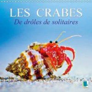 Les crabes - de drôles de solitaires (Calendrier mural 2015 300