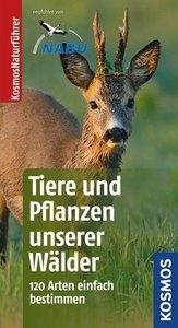 Tiere und Pflanzen unserer Wälder