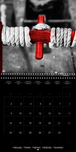 Beauty in Red (Wall Calendar 2015 300 × 300 mm Square)