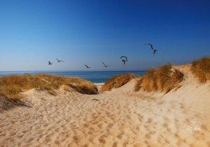 Dünen - an der Nordsee (Tischaufsteller DIN A5 quer)