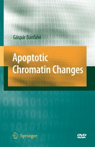 Apoptotic Chromatin Changes