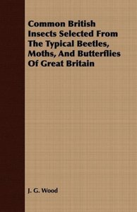 Common British Insects Selected From The Typical Beetles, Moths,