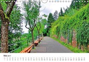 Heidelberg - Heiligenberg und Philosophenweg (Wandkalender 2017