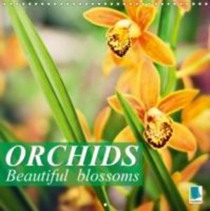 Orchids: Beautiful blossoms (Wall Calendar 2015 300 × 300 mm Squ