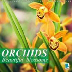 Orchids: Beautiful blossoms (Wall Calendar 2015 300 × 300 mm Squ