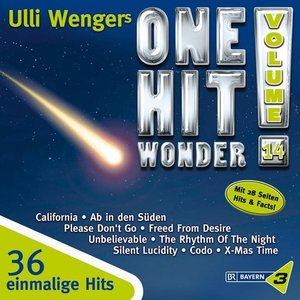 One Hit Wonder Vol.14