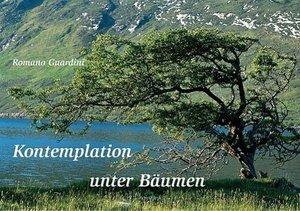 Kontemplation unter Bäumen