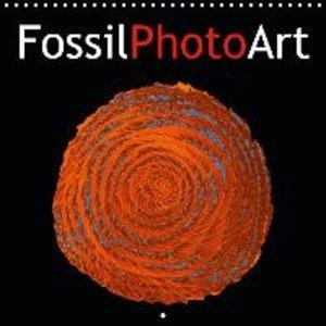 FossilPhotoArt (Wall Calendar 2015 300 &times 300 mm Square)
