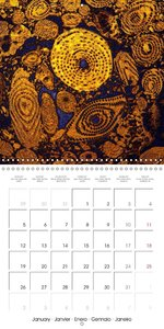 FossilPhotoArt (Wall Calendar 2015 300 &times 300 mm Square)