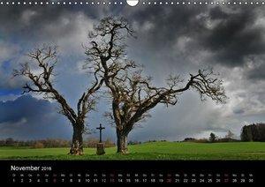 Bäume sind Träume (Wandkalender 2016 DIN A3 quer)
