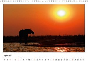 African Elefants (UK-Version) (Wall Calendar 2015 DIN A3 Landsca