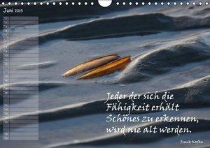 SchnelleWelten: Sprücheklopfer / Geburtstagskalender (Wandka