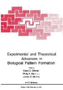 Experimental and Theoretical Advances in Biological Pattern Form