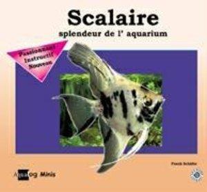 Scalaire