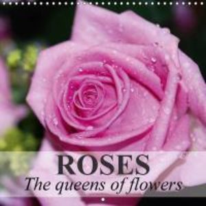 Roses - The queens of flowers (Wall Calendar 2015 300 × 300 mm S