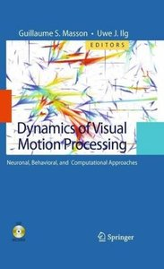 Dynamics of Visual Motion Processing