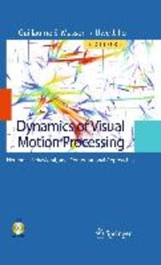 Dynamics of Visual Motion Processing