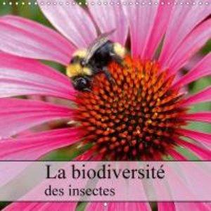 La biodiversité des insectes (Calendrier mural 2015 300 × 300 mm