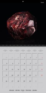 The Fascination of Minerals (Wall Calendar 2015 300 × 300 mm Squ