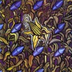 Against The Grain/Reissue