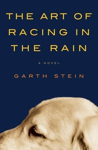 Stein, G: The Art Of Racing In The Rain