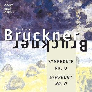Sinfonie 0