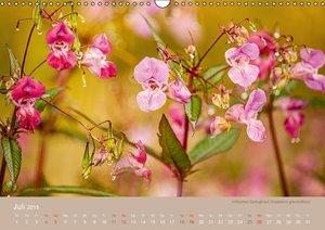 WILD UND GESUND (Wandkalender 2015 DIN A3 quer)
