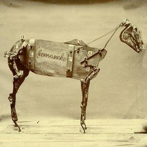 The Horse Comanche (180 Gr.Gatefold & CD)