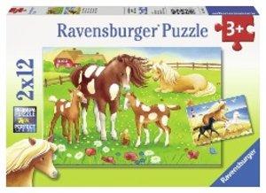 Wehende Mähnen. Puzzle 2 X 12 Teile