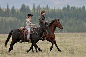 Heartland - Paradies für Pferde, Staffel 5.1