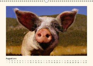 Leon: Muh, Mäh, Miau & Co (Wandkalender 2015 DIN A3 quer)