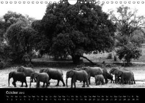 AFRICA BEAUTIFUL LANDSCAPES 2015 (Wall Calendar 2015 DIN A4 Land