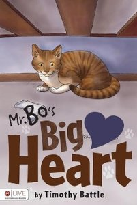 Mr. Bo's Big Heart