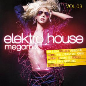 Elektro House Megamix Vol.08