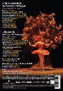 Frühlingsopfer · Der Feuervogel