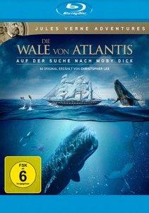 Wale von Atlantis - Auf der Suche nach Moby Dick/Blu-ray