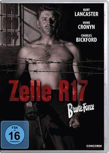 Zelle R17 (DVD)