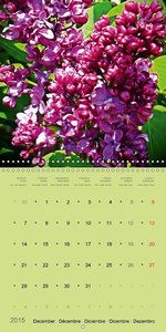 ENCHANTING FLOWER VARIETIES (Wall Calendar 2015 300 × 300 mm Squ