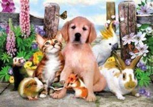 Tierisch gute Freunde. Puzzle XXL (100 Teile)