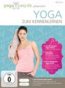Yoga Easy-Yoga Zum Kennenlernen